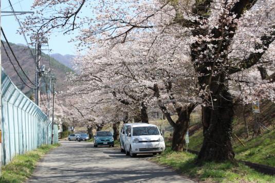 桜 鹿留水力発電所 駐車場