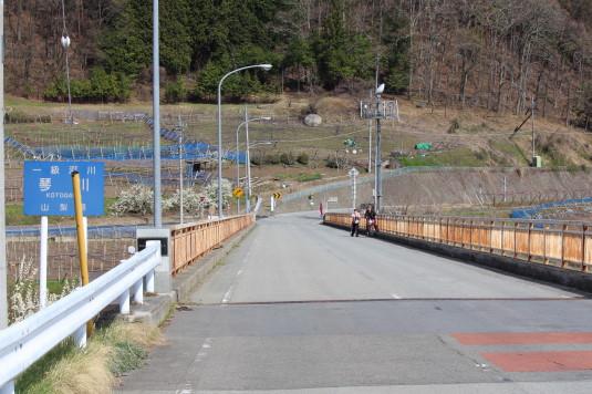 桜 乙ヶ妻 道中 橋