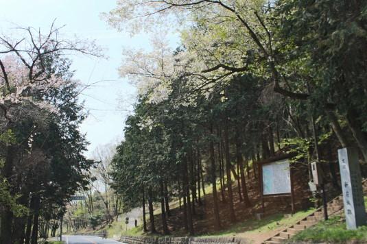 新府城跡 入口前道路