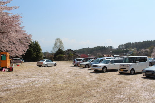 真原の桜並木 駐車場 無料