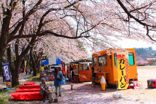 真原の桜並木 露店1