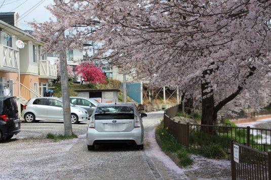 長坂湖 道路