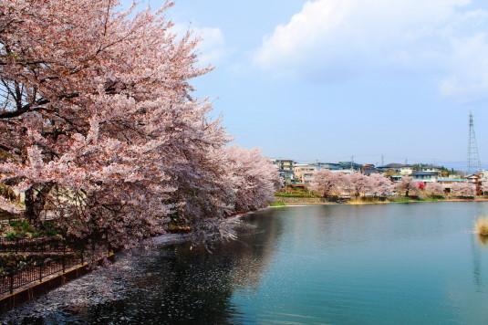 長坂湖 外観
