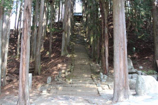 桜 雲峰寺 入口 正式
