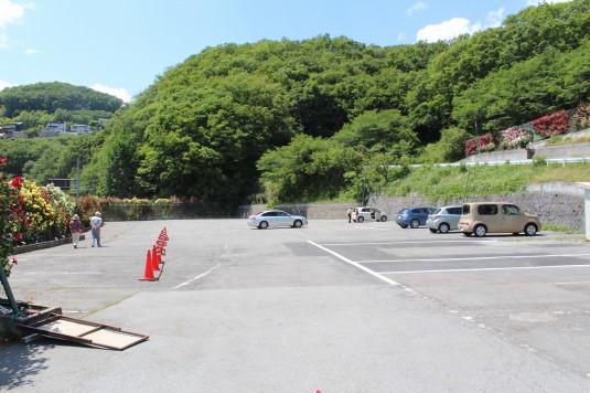 東光寺のバラ 駐車場