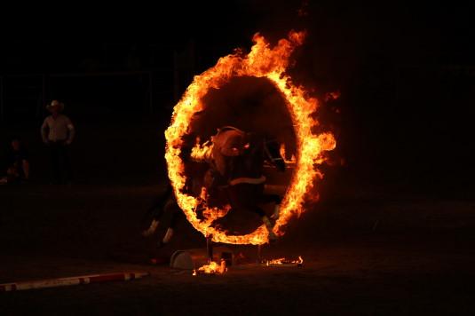ホースショー ファイヤージャンピング 火の輪