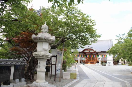 神明の花火 宝寿院