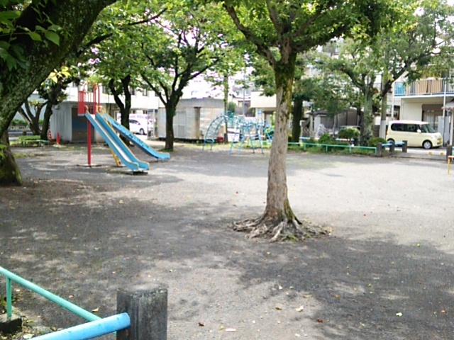 DSC_0356.jpg