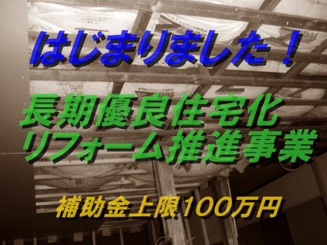 P3030005_20140502182319a50.jpg