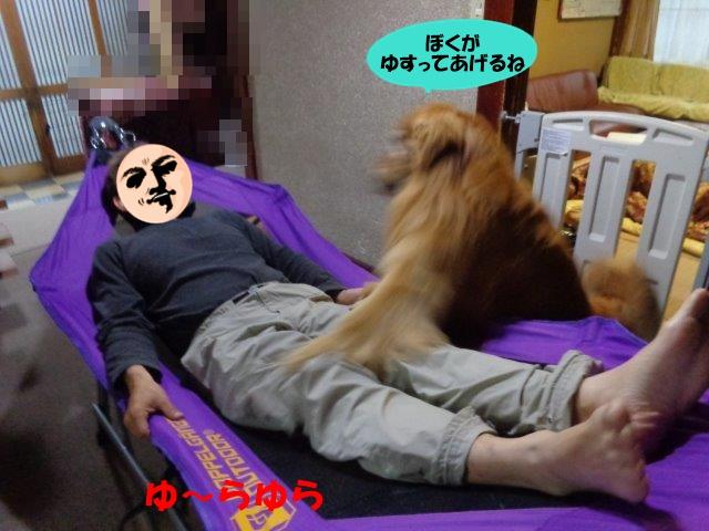 DSC00490_20140521200029f96.jpg