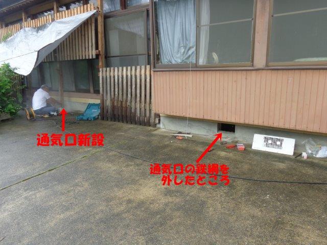 DSC01314.jpg