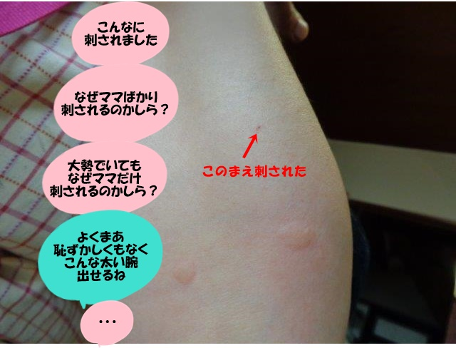 DSC01441.jpg