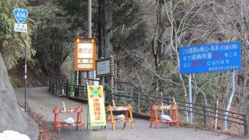 140228河津桜 (1)_R