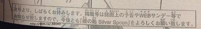 silver-spoon.jpg