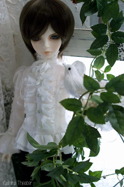 doll20140308001.jpg