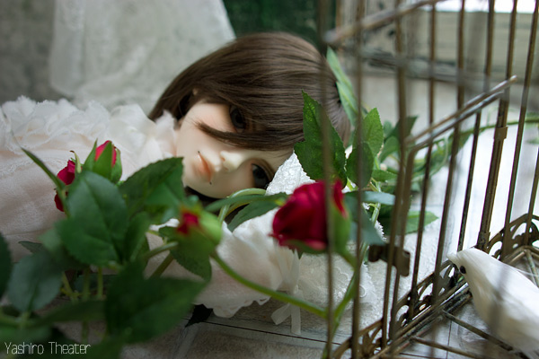 doll20140308004.jpg