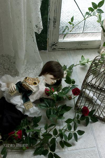 doll20140308007.jpg