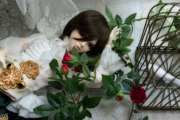 doll20140308016.jpg