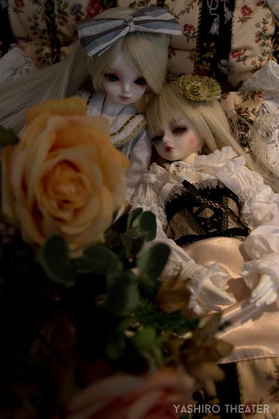 doll20140325001.jpg