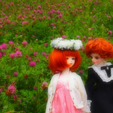 doll20140711001.jpg