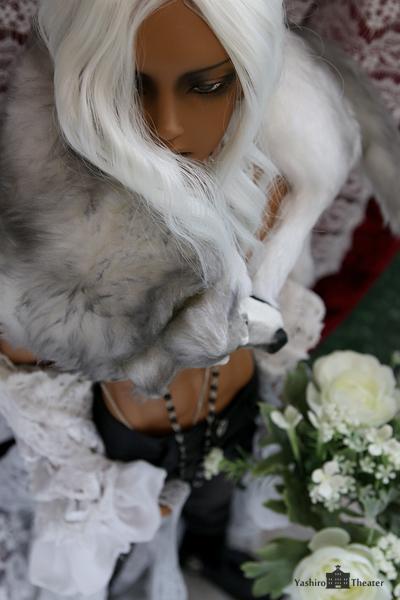 doll20140724006.jpg