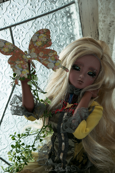 doll20140902001.jpg