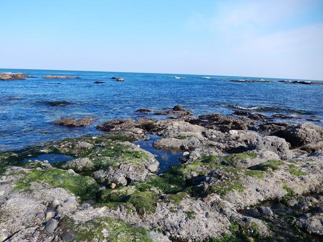 大洗海岸20140510003