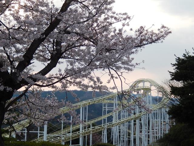 かみね公園20140410007