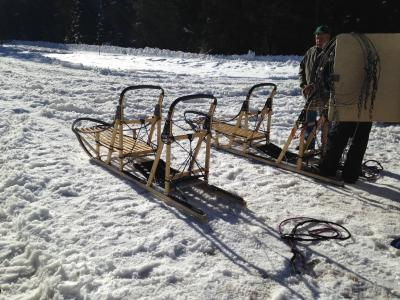 dog sled 2