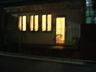 P1020133.jpg