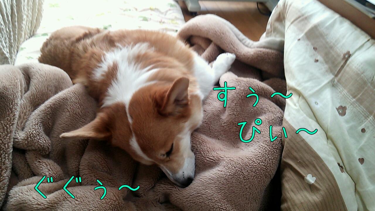 すぅ~ぴぃ~ぐぐぅ~