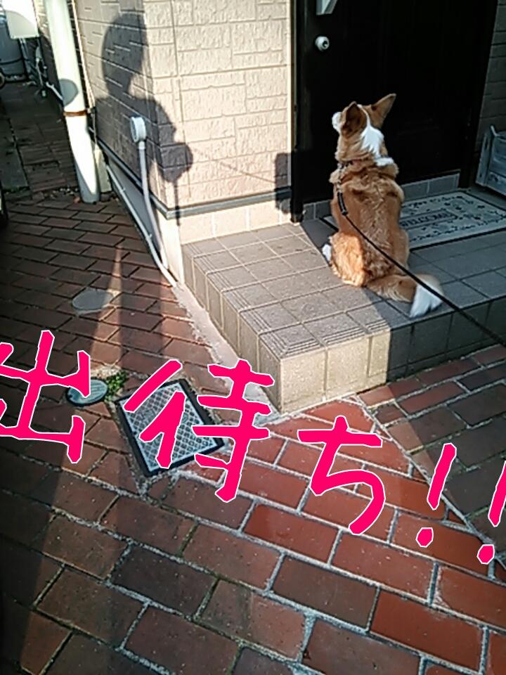 出待ち!!