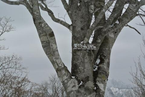 20140322 tenguyama2 018