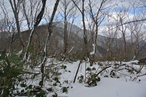 20140322 tenguyama2 026