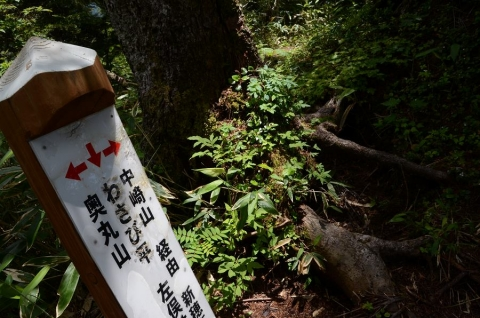 20140712 okumaruyama 093
