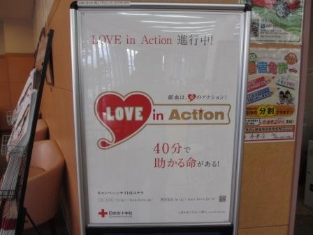 赤十字写真2