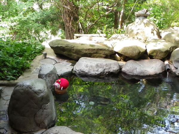 りんご丸 野天温泉に入る!の巻
