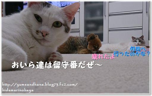 01-元気140215