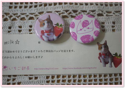01-缶バッチ140311