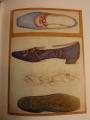 バーン・ジョーンズの靴