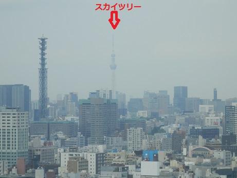 2014050801.jpg