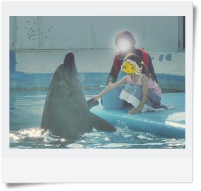 2014.7みさき公園①握手