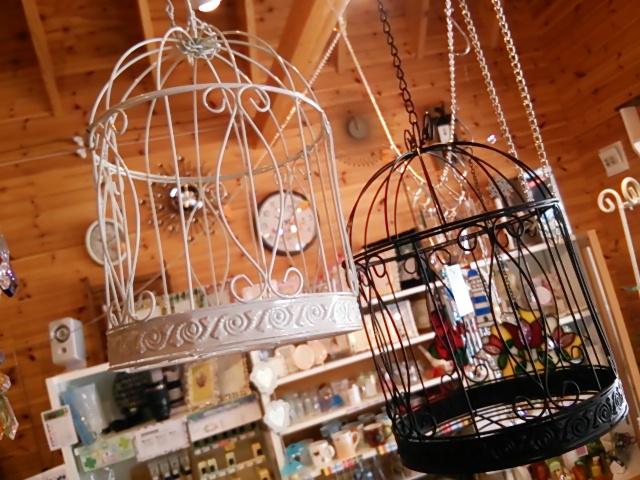 鳥かごDSC_0736