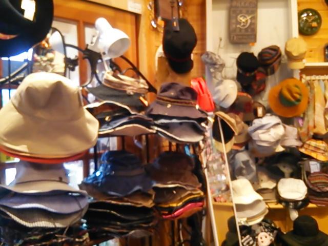 帽子全体DSC_0883