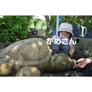 PhotoGrid_1409958645888.jpg
