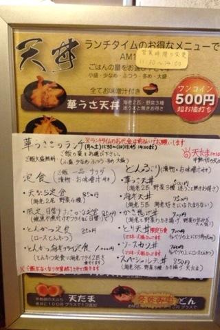 2014-07-17 華うさぎ2