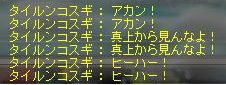 Maple130825_000712.jpg