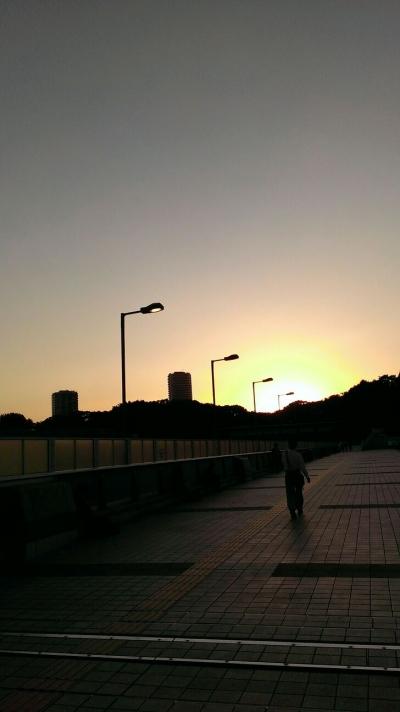 上野20140516