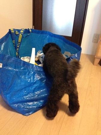 IKEA201407-2.jpg