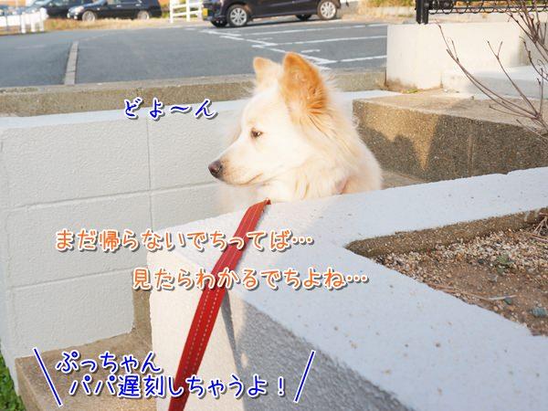 20140221_3.jpg
